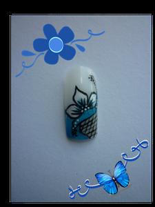 bleu.png