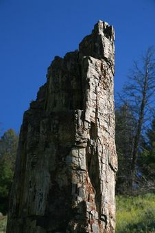 wood ridge dating Start studying geology exam 2 learn vocabulary,  which type of rock is most likely to form a ridge due to differential weathering  petrified wood,.