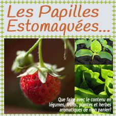 Logo-papilles-estomaquees-printemps.jpg