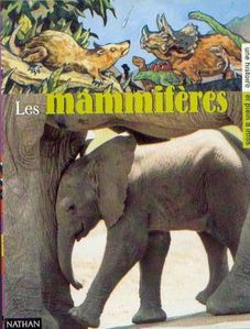 Les-mammiferes.jpg