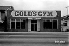 gold-s-gym-facade.jpg
