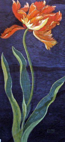 Nine tulipe perroquet