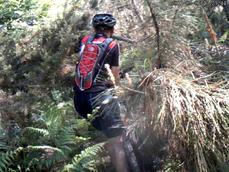 vlcsnap-2011-05-09-21h34m24s210