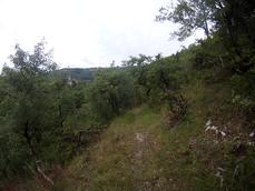 vlcsnap-2014-07-10-21h34m42s234