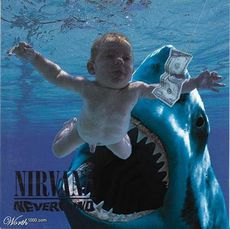 nevermind shark