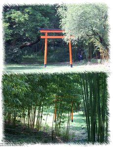 jardin zen 15