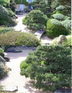 jardin zen 25