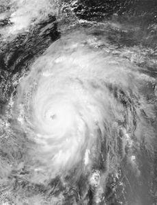 cyclone ivan n&b