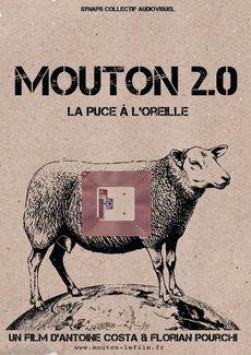 moutonA3