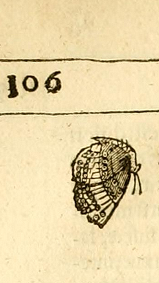 Argus-Thomas-Moffet-page-106-fig.1-c.png