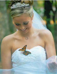 envol de papillons cérémonie mariage