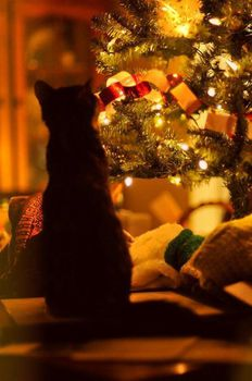 chat-noel-fb-dec-14.jpg