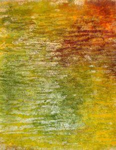 lutra et teinture04 002