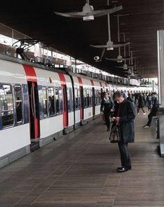 RER.jpg