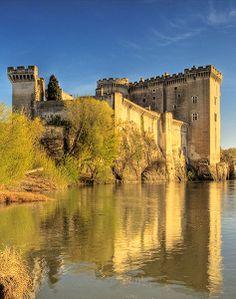Castle of Tarascon