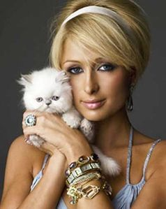 paris-hilton-et-son-chat