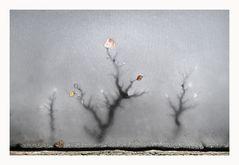 Eliane Villette - Reflet glacé