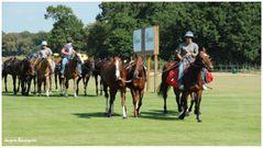 Polo Open de France Chantilly 02