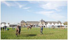 Jumping Chantilly 20 avril 2013 o