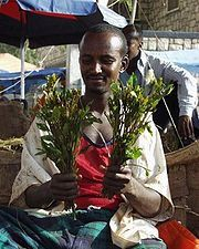 qat seller