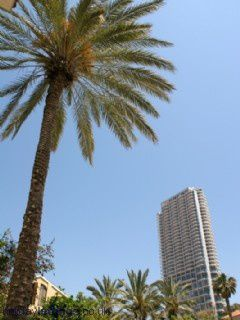 Neve Tzedek Tower, 2 bedrooms for rent, Tel Aviv