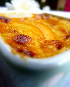 gratin