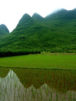 05 Guilin - Yangshuo 02