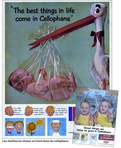 bebes-cellophane-1443523.jpg