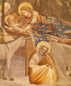 Nativite--Giotto-.png