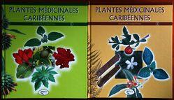 PlantesM-dicinalescarib-ennes.jpg