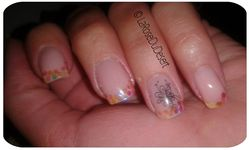 2012.06.22 french hexagones holo (4)
