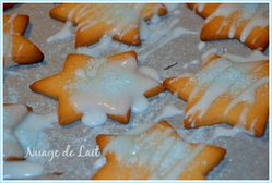 Etoiles de Noël biscuit gingembre cardamome