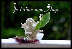 amour-ange-muguet