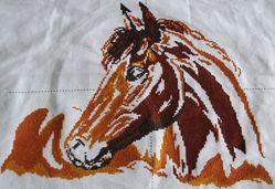 Tête de cheval 01