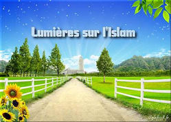 lumieres.png