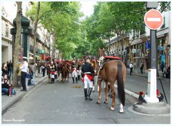 Paris defile du 14 juillet 2012 cavalerie