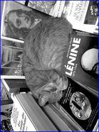 chat livres s