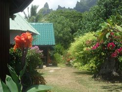 pension-de-famille-moorea-chez-dina-pas-cher-1.jpg