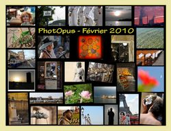 PhotOpus-Feb-2010