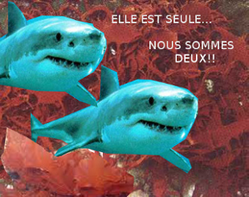 requins double