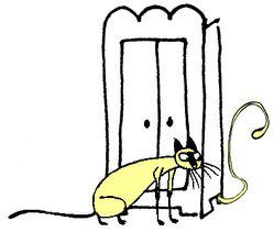 Chat et armoire