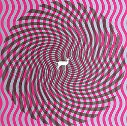 4Deerhunter-2007-Cryptograms