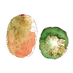 illustration-kiwi-a-l-aquarelle--copie-1.jpg