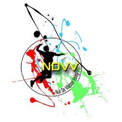 logo-ndvv_nuitdevillebonvolley