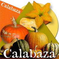 Badge calabaza200
