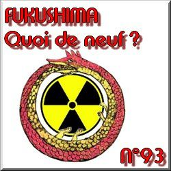 FUKUSHIMA-news-actu-info-direct-live-suivi-natures-paul-kei.jpg