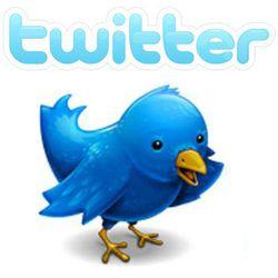twitter bouton