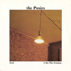 3-1992-ThePosies-Feel-I-am-a-cosmos.jpg