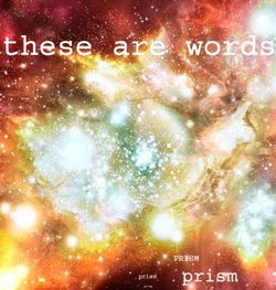 04-2008-TheseAreWords-Prism.jpg