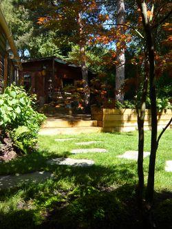 Erable du Japon, terrasse en Pin et plantes de terre de Bru